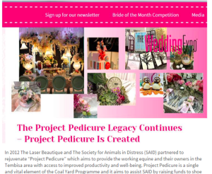 Wedding Expo Blog PR - PR Value R26,294.6